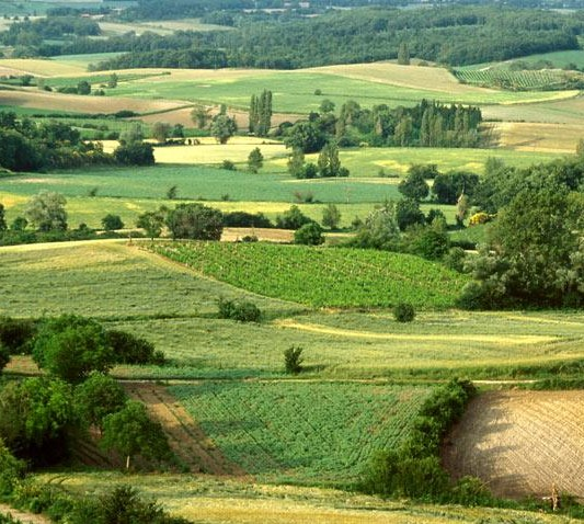 Five Reasons To Travel To France French Countryside Southern France - French country side
